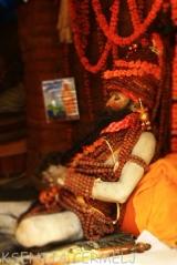 indija 2013 - 2 1167