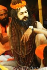 indija 2013 - 2 1349