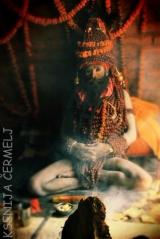 indija 2013 - 2 1429