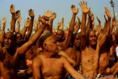 indija 2013 - 2 1712