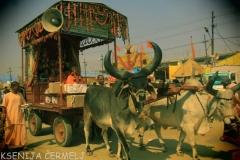 indija 2013 - 2 1736