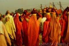 indija 2013 - 2 1748