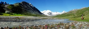 sofia-ledenik